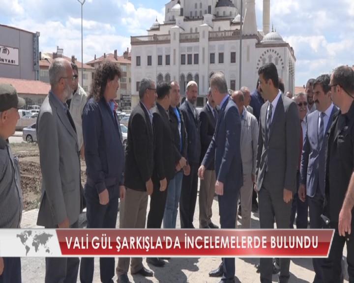 VALİ GÜL ŞARKIŞLA'DA İNCELEMELERDE BULUNDU